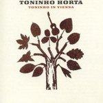 Toninho_horta