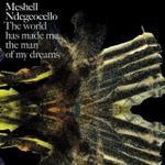Meshell