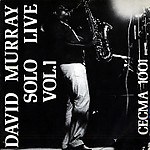 David_murray_solo_live_1