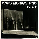 David_murray_the_hill