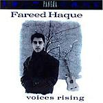 Voices_rising